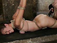 Busty Audrey is tightly bound, arched and dildo fucked