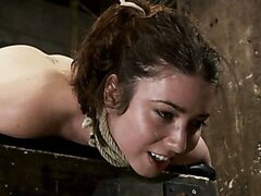Girl next door bound ass up. Double penetrated Skull fucked & caned, vibrated 2 multiple orgasms