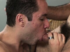 Danilo bear special as these furry boys bang some hairy gay ass