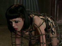 Asphyxia forced getting inside the wired cage