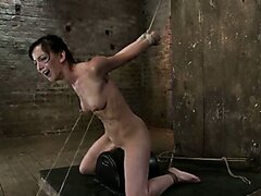 Elise is held down by her huge nipples clamped and cums in pain