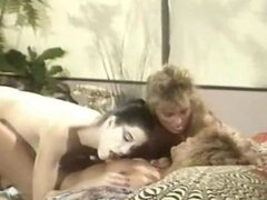 The golden age porn vintage old video porn with erica Boyer