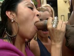 Male dancers and blowjobs at party