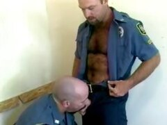 Older bear cops in hot gay love