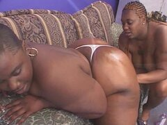 Fat black lesbians are cunt lickers