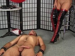 Leathery mistress in red takes control over her slave