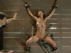 Asian Babe Hung From a Wall and Fucked Hard in BDSM Vid