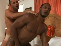 He stuffs his hard white rod into his black ass